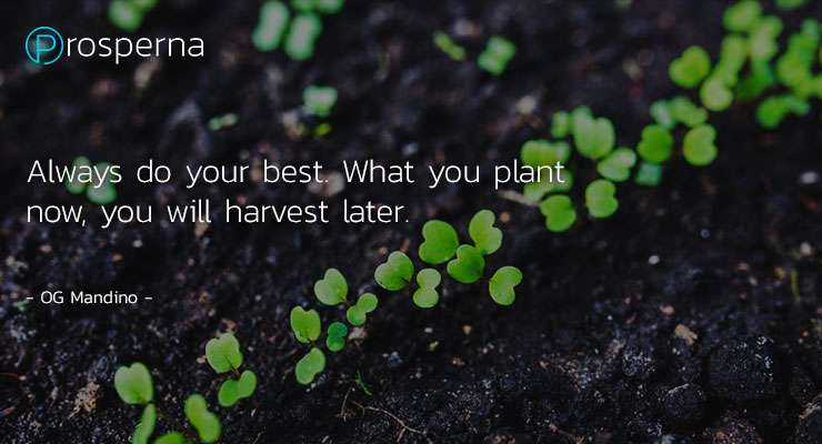 Always do your best. What you plant now, you will harvest later. – Og Mandino